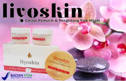 liyoskin51.png
